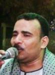 احمد الفنان, 42  , Mallawi