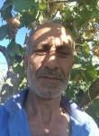 Бахш, 57  , Dagestanskiye Ogni