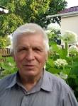 теритВолодимир, 69  , Brovary
