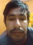 Jose, 31  , Santa Catarina
