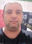 Angelo, 40  , Ponta Grossa