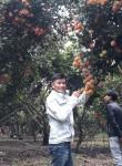 Vinh lê, 30  , Ho Chi Minh City