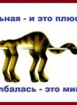 макс, 33 года, Москва