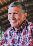 Nikolay, 72  , Tolyatti