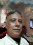 Asyad, 53  , Al Mansurah
