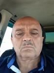 Adalyat, 56  , Mastaga