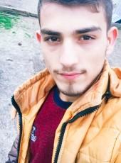 Levent, 20, Turkey, Istanbul
