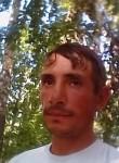 Михаил, 39 лет, Мамонтово