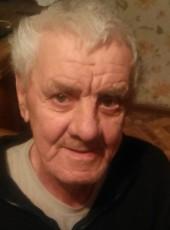 Viktor Krevinkov, 66, Russia, Perevoz