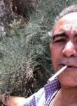 Far had, 39  , Tabriz