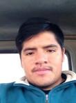 stark, 27  , Tacna