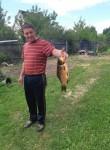Bazyl, 44  , Babruysk