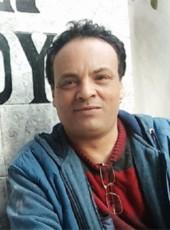 واحد, 48, Egypt, Disuq