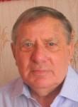 Владимир, 77 лет, Полярный