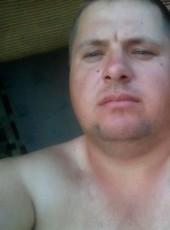 Roman, 32, Russia, Priyutnoye