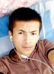 ULUGBEK, 18  , Nazran
