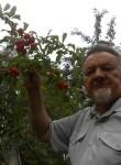 Vladimir, 74  , Vitebsk