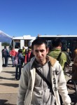 Vladimir, 29  , Zelenogradsk