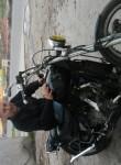 bruno osvaldo, 65  , Mar del Plata