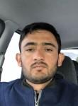 HamidHameedi