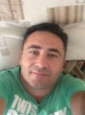Марк, 41, Россия, Воронеж