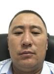 Batyrkhan, 35  , Shymkent