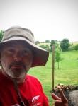 honeycot johnson, 53  , Abakaliki