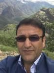 مصطفي, 35  , Tehran