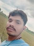 Kuttu, 79  , Indore