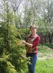 Katerinka, 80  , Rostov-na-Donu