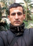 Farid, 35  , Malakhovka