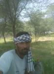 बलकार, 30  , Gorakhpur (Haryana)