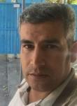 كارزان, 26  , Sarpol-e Zahab