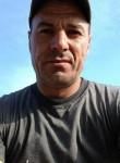 Gheorghe Gorovei, 43  , Vienna