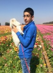 אופק, 23  , Gaza