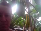Dmitriy, 42 - Just Me фруктовая плантация