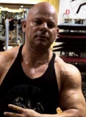 musculoso, 41, Brazil, Sao Paulo