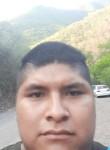 Barto, 24  , Jardines de la Silla (Jardines)