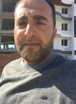 bariş, 31  , Osmaneli