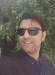 Arash426, 37  , Shiraz