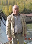 feniks, 65  , Satka