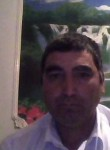 Almas, 55  , Karakul