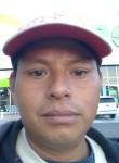 Eliazim, 25  , San Jose del Cabo
