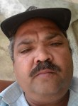 Nilesh, 53  , Ahmedabad