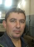 сергей, 44, Piterka