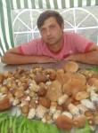 Aleksey, 31  , Podolsk
