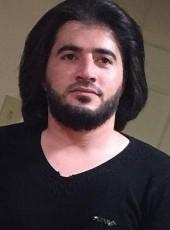 Hadi, 25, United States of America, Dearborn
