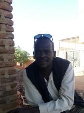 تاج الدن, 41, Sudan, Khartoum