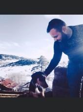 Ali, 28, Turkey, Aksehir