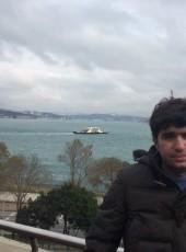 misha, 38, Azerbaijan, Zaqatala